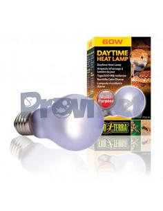 Daytime Heat Lamp
