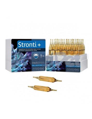 Stronti +