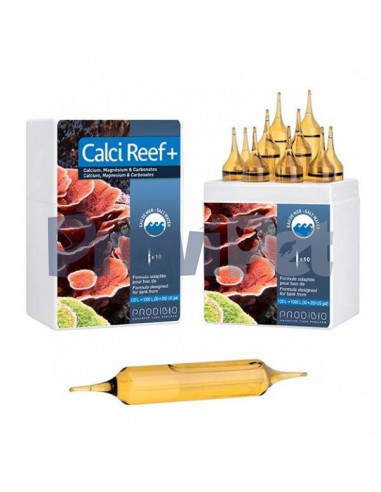 Calci Reef