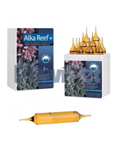Alka Reef