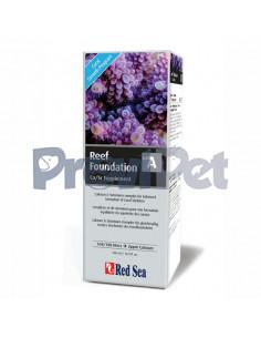 Reef Foundation A