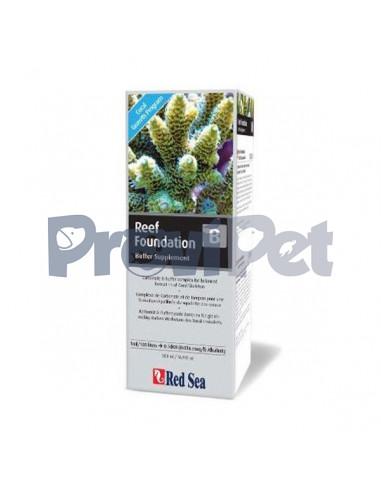 Reef Foundation B