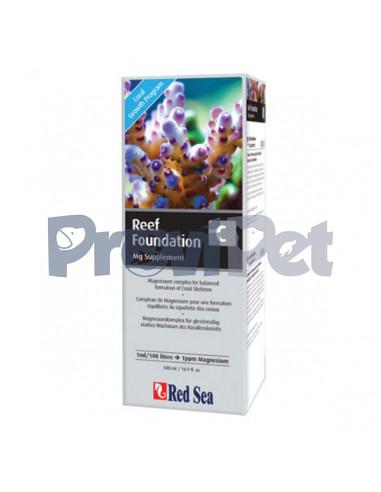 Reef Foundation C