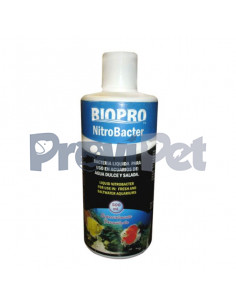 Nitro Bacter