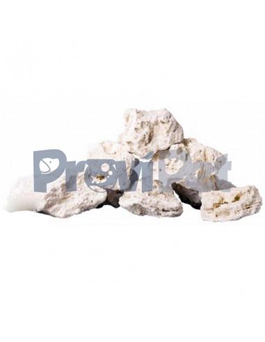 Rock Base Reef