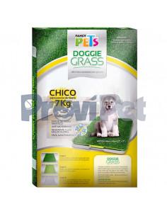 Doggie Grass