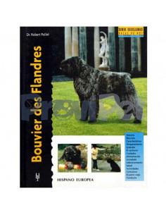 Bouvier Des Flanders
