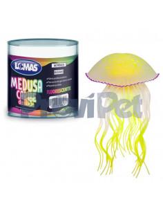 Medusa Caribe