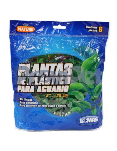 Paquete De Plantas